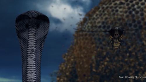 nghe xong chuyện rắn và ong bạn sẽ không muốn trừng phạt người khác