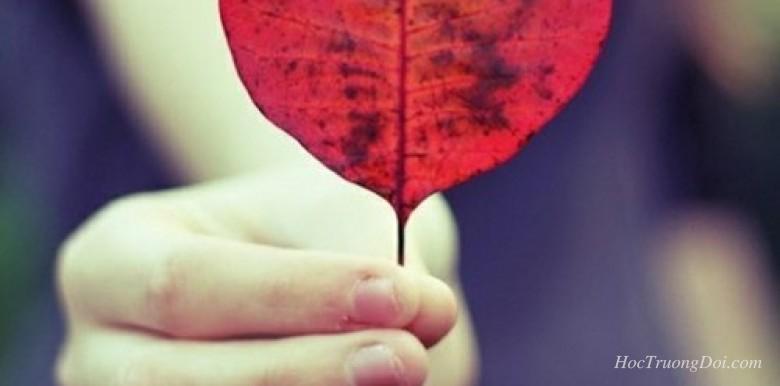 tình cảm giữa người với người, cứ nhạt một chút sẽ tốt
